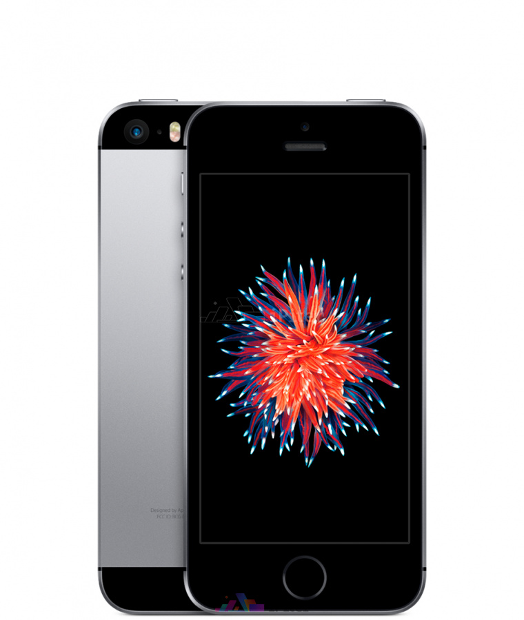 Фото Купить Apple iPhone SE 16Gb<br> Space Gray (MLLN2RU/A)